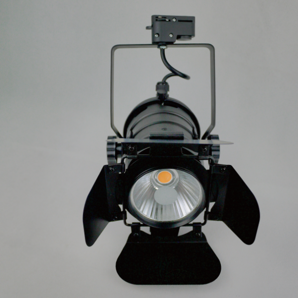 LED track light with leaf